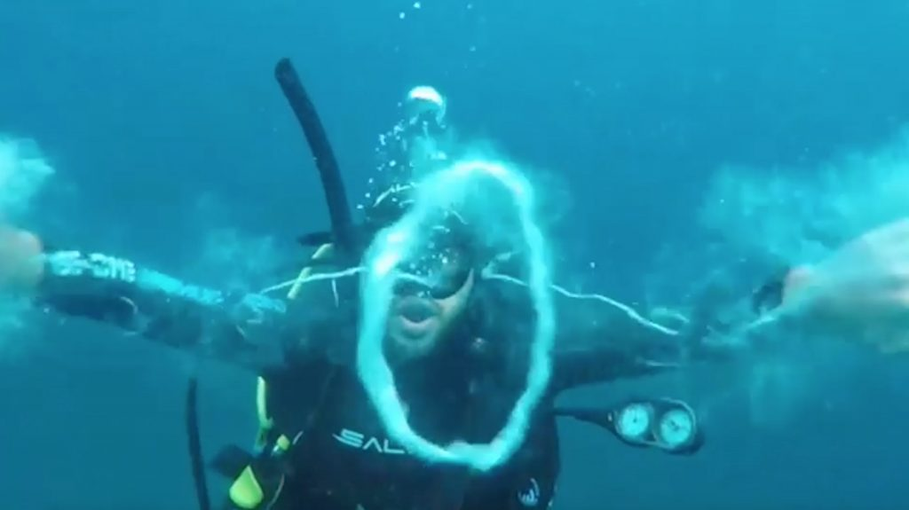 blowing caters bubble rings from news underwater bubbles level with adam takes to new diver a stern pic