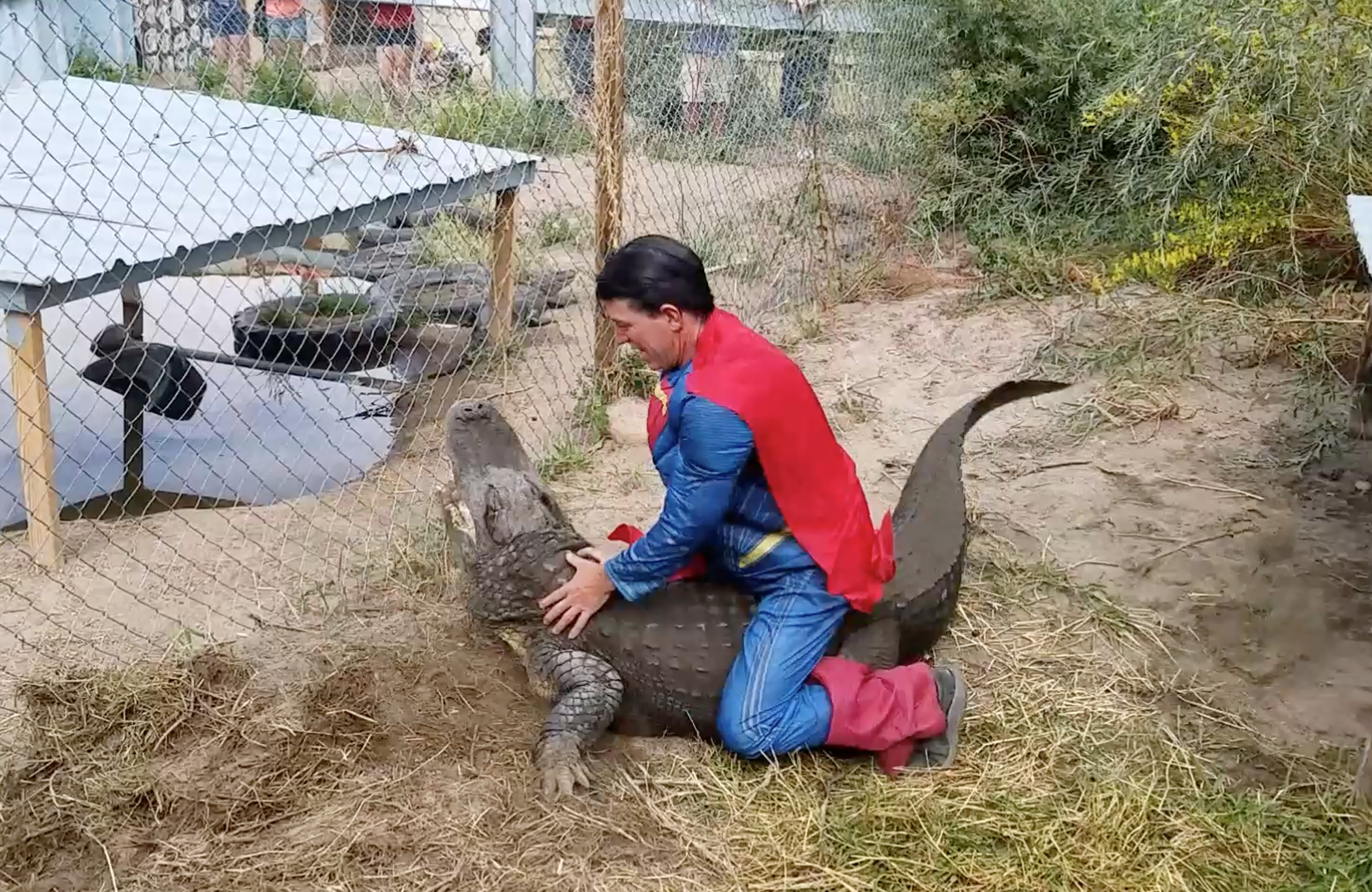 http://www.storytrender.com/wp-content/uploads/2017/09/6_CATERS_SUPERMAN_GATOR_EGG_EXTRACTION_07.jpg