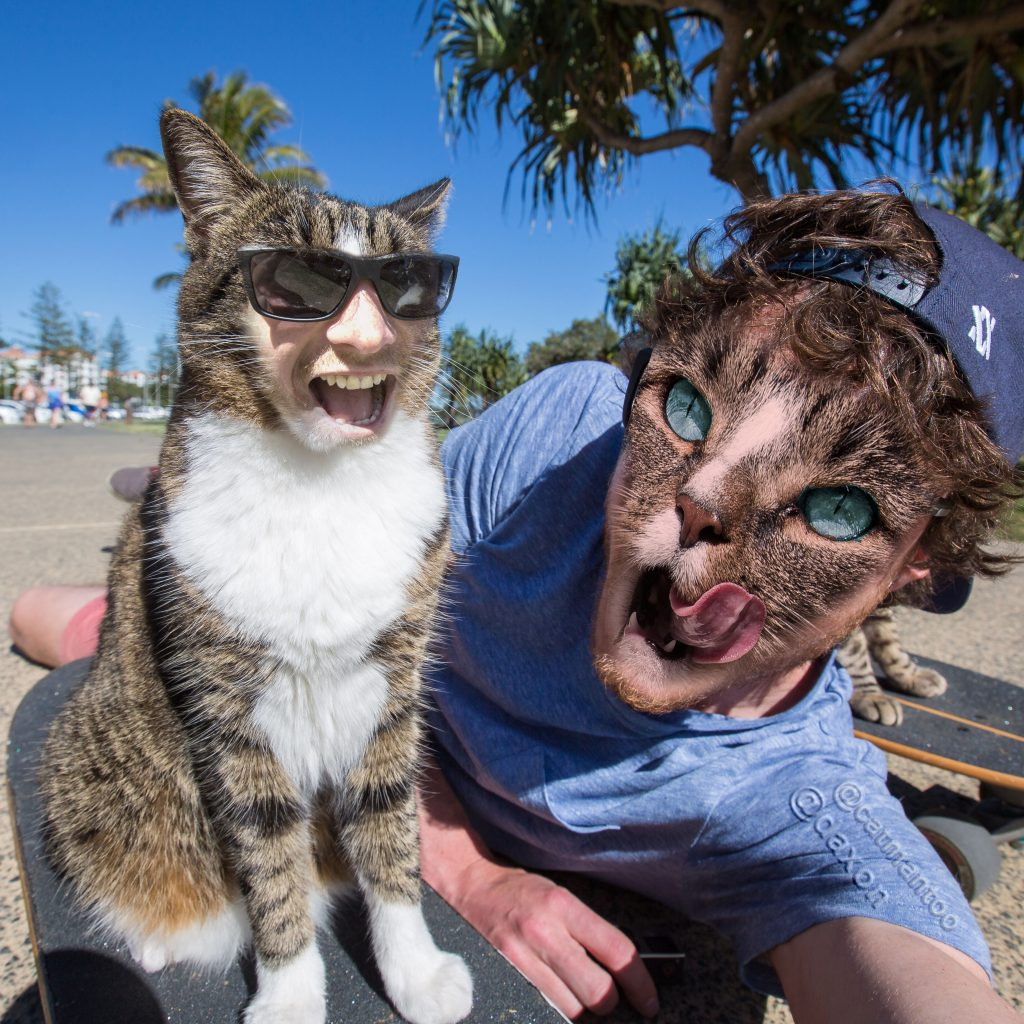 25 Horrifying and Hilarious Animal Face Swaps | Pleated Jeans |Mouse Animal Face Swap
