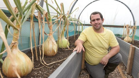 Sweet leeks are made of these! Allotment owner says stroking giant veg is his secret to making them so big Image