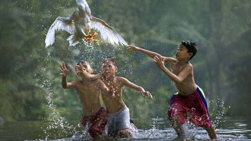 Stunning images of children playing with animals look like something out of a fairytale Image