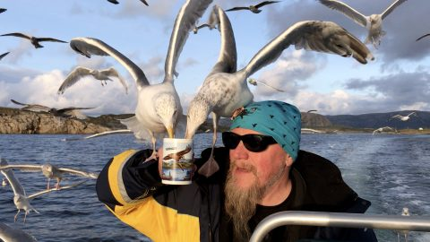 It's a tea-gull! Photographer snaps moment seagulls swarm captain for his classic cup of tea Image