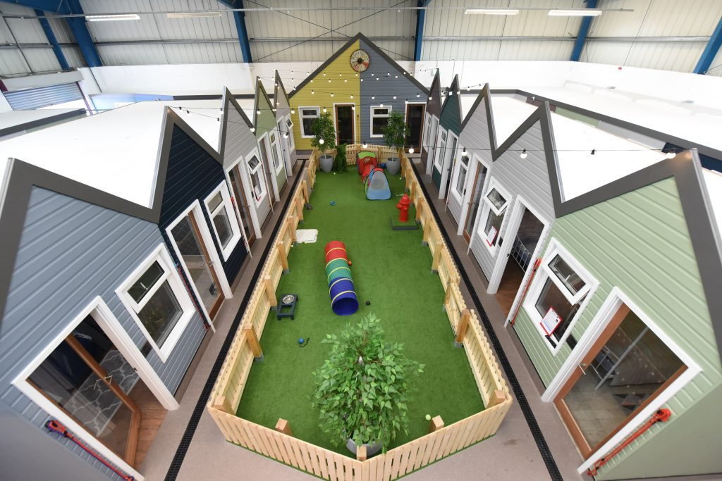 It's A Dog's Life! Inside £1m Luxury Dog Hotel Equipped