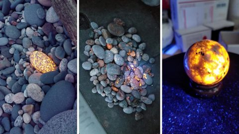 """Amazing footage shows woman finding glowing """"yooperlite"""" rocks for the first time Image"""