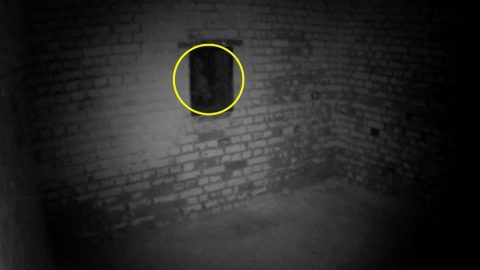 Watch: Spooked gym instructor catches ghostly grey figure with glowing eyes lurking in castle window Image