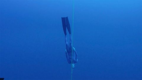 Free-diver becomes world champion after plunging 101 metres Image