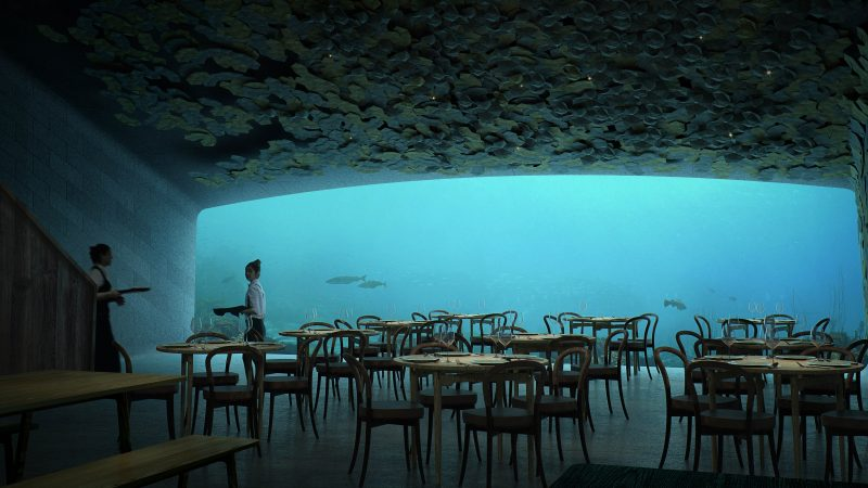 Seafood and eat it: Inside the world's largest underwater restaurant where marine life will swim by as you eat Image