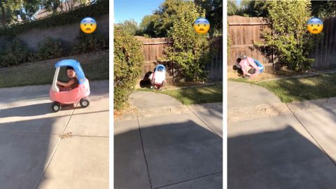 Hilarious moment girl rolls over in toy car and gets stuck next to the fence Image
