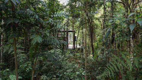 Minimalist cabin offers the ultimate off-the-grid getaway – as it's located in the Brazilian rainforest Image