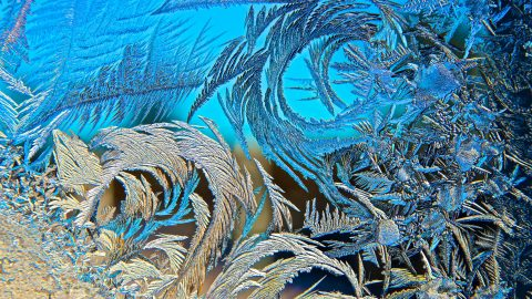 Ice, ice… Maybe? – Photographer snaps macro images of enchanting frost crystals that look like abstract works of art Image
