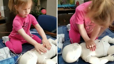 Staying aww-live: Adorable two-year-old learns how to do CPR Image