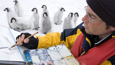Beak-casso! artist spends 15 years bracing barbaric winds, risking hypothermia and blistering sunburn to p-p-paint with penguins Image