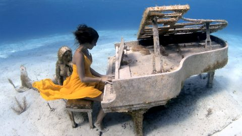 Breathtaking Images Of Free Diver Playing Underwater Piano Image