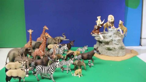Move Over Disney! Ingenious Disney Fan Recreates 'the Circle Of Life From The Lion King Using Just Toys Image