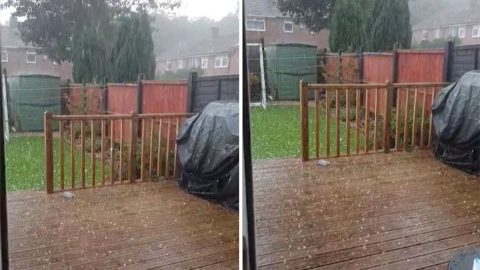 Watch: Moment Huge Hailstones Fall On Garden In Midst Of 37 Degree Temperatures In Other Parts Of The Uk Image