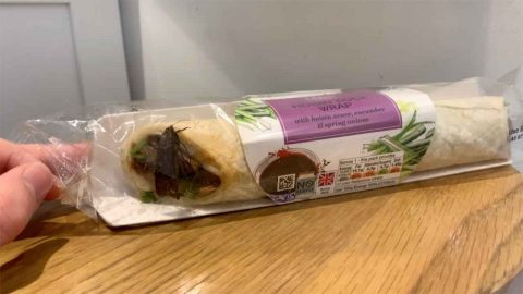 Should Have Gone For Wings Instead! Horrified Barber Finds Huge Live Moth Flying Around Inside Sealed M&s Wrap Image