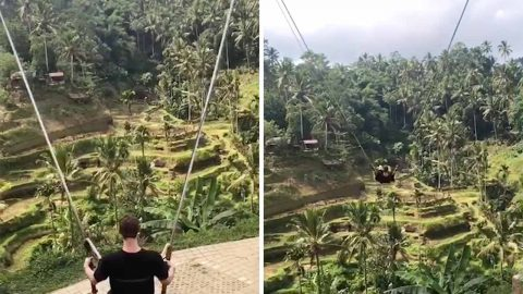 Huge Jungle Swing Lets Riders Witness Stunning Rice Terraces Image