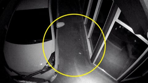SURVEILLANCE CAMERA SPOTS CREEPY GHOST FIGURE RUNNING DOWN DRIVEWAY FOUR DAYS AFTER FATHER PASSES AWAY Image