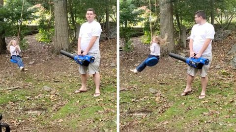 INGENIOUS DAD USES LEAF BLOWER TO PUSH DAUGHTER IN HER ROPE SWING Image