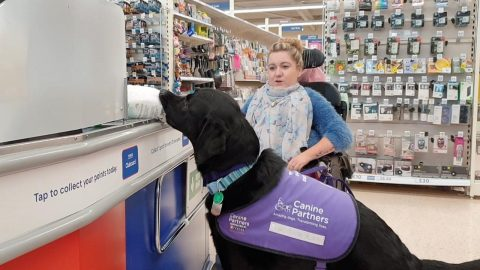 LABRADOR TRANSFORMS DISABLED OWNERS LIFE BY LEARNING HOW TO PAY AT TILLS, LOAD LAUNDRY AND DRESS HER Image