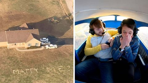 THIS MAN TOOK HIS GIRLFRIEND UP IN A PLANE TO POP THE QUESTION THROUGH A HUGE SIGN IN HIS FRONT YARD Image