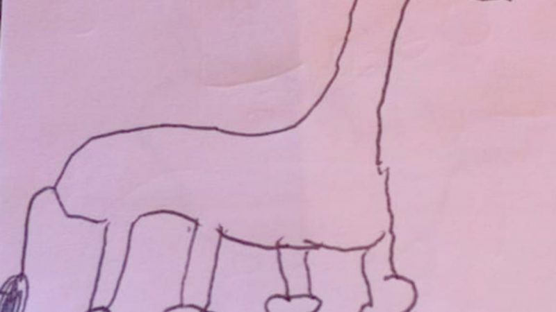 SCHOOLGIRL FINALLY REALISES WHY DRAWING OF GIRAFFE WITH 'KNOBBLY KNEES' IS HILARIOUS FIVE YEARS LATER Image
