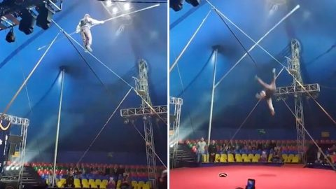 TIGHTROPE WALKER PLUMMETS TO FLOOR IN SCARY CIRCUS VIDEO Image