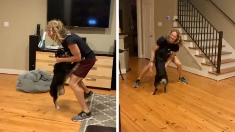 DOGGY DANCING: NINJA WARRIOR DANCES WITH HAPPY DOGGO IN HEARTWARMING VIDEO Image