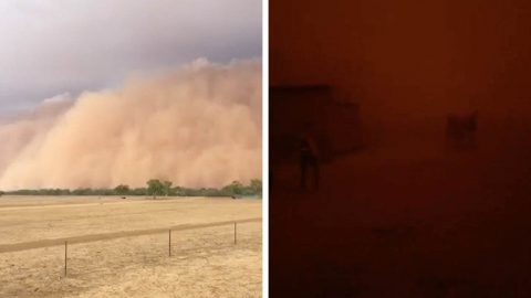 WATCH: TERRIFYING DUST CLOUD ENGULFS TOWN FOLLOWING AUSTRALIAN BUSHFIRE CRISIS Image