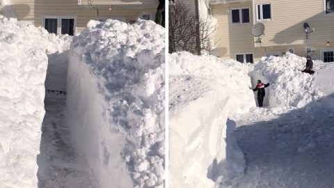 HEAVY SNOWFALL FORCES WOMAN TO SPEND FOUR HOURS SHOVELLING A PATH OUT OF HER HOME Image