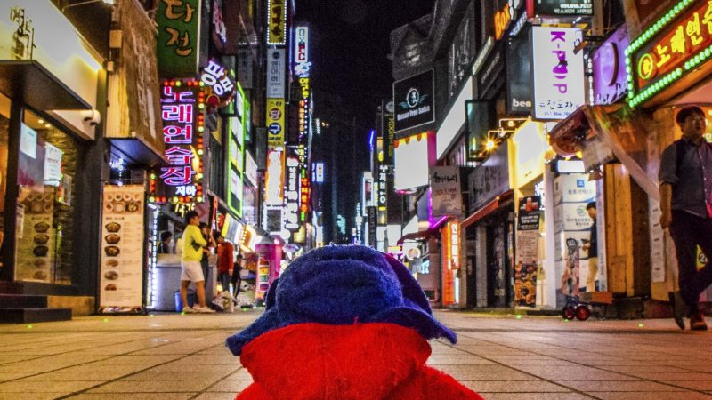 PLEASE LOOK AFTER THIS BEAR! TINY PADDINGTON BEAR'S GLOBE TROTTING ADVENTURES Image