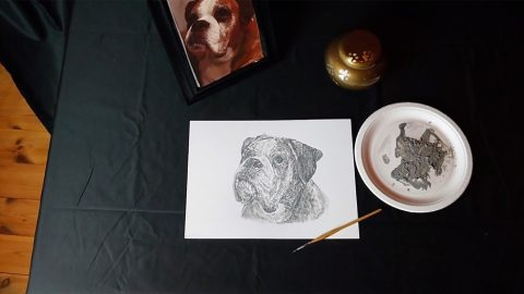 AMAZING ARTIST PAINTS PORTRAIT OF LATE POOCH USING DOG'S OWN ASHES Image