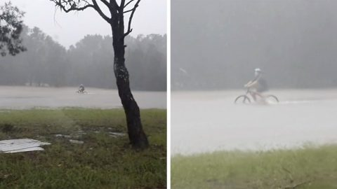 BRAVE CYCLISTS TACKLE STORM BY RIDING THROUGH FLOODED FIELD Image
