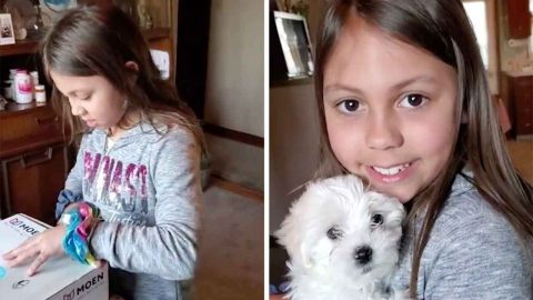 ADORABLE MOMENT GIRL SCREAMS WITH JOY AFTER BEING SURPRISED WITH TINY PUPPY Image