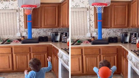 ADORABLE TODDLER BASKETBALL SENSATION SCORES POINTS FROM HIGH CHAIR AND CRIB Image