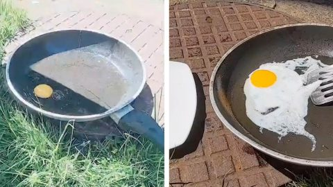 BRIT USES SCORCHING UK SUMMER HEAT TO COOK FRIED EGG OUTSIDE Image