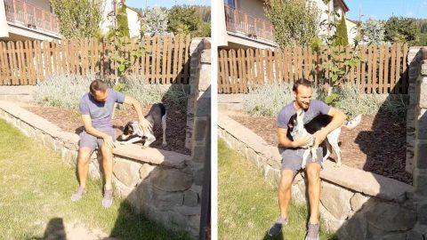 WATCH: REUNITING WITH MANS BEST FRIEND – DOG AND DAD REUNITE AFTER THREE MONTHS APART Image