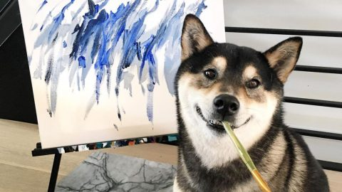 PAWCASSO! ADORABLE DOG EARNS MORE THAN £13,000 BY SELLING HIS PAWTRAITS ONLINE Image