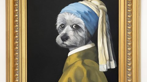 PICTURE PAWFECT - WOMAN PAINTS 17TH CENTURY PORTRAITS OF PETS Image