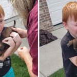 HEART-WARMING MOMENT BOY IS SURPRISED WITH TINY PUPPY AFTER SAVING ALL OF HIS CHANGE TO BUY ONE