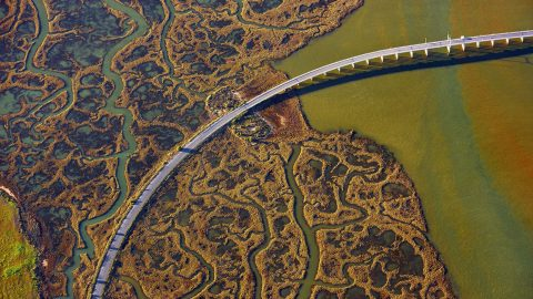 A birds eye view – Stunning collection of images show bridges from above Image