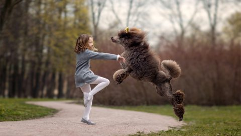 A girls best friend – Adorable images capture young ballet dancer partnered with canine friends Image