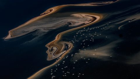 A galaxy not so far away: Amazing mineral constellations on lake surfaces Image