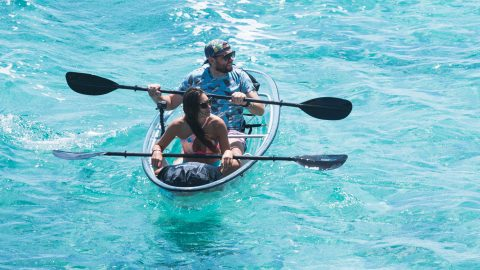 Kayak with a view – Glass boat available to buy showcases fascinating sea creatures Image