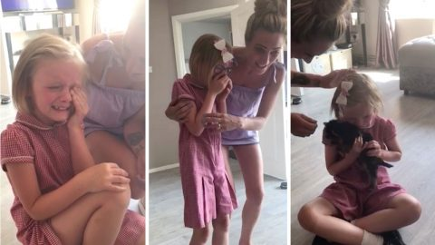 Emotional moment when mum surprises her daughter with a puppy - after previous dog passed away Image