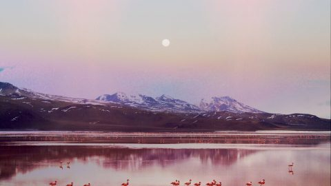 Photography series turns world's largest salt flats into dreamy fairytale Image