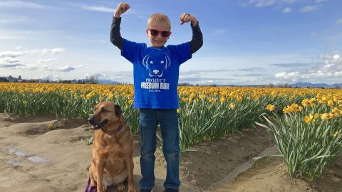 Dog days are over: inspirational seven-year-old credited with saving the lives of 1,200 dogs that were destined for death row in just two years Image