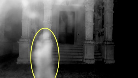 Romeo and ghouliet! Engineer snaps loved-up ghosts embracing in eerie photograph Image
