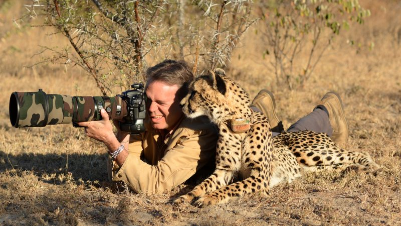 Photographers harassed by their animals subjects in hilarious wildlife snapshots Image