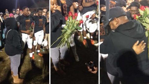 Coach scored the love of his life after proposing on pitch Image